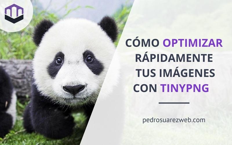 TinyPNG, el optimizador de imágenes por exelencia