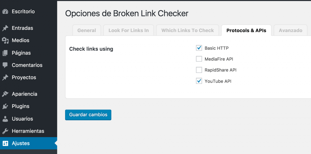 Broken Link Checker Panel 4